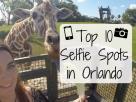 Top 10 Selfie Spots in Orlando