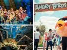 5 Fun Ways to Spend the Summer Holidays!