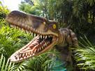 Velociraptors at Universal's Islands of Adventure