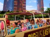 Las Vegas Hop-on Hop-off Bus - Day Tour