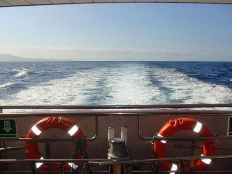 Royal Delfin Cruise Tenerife