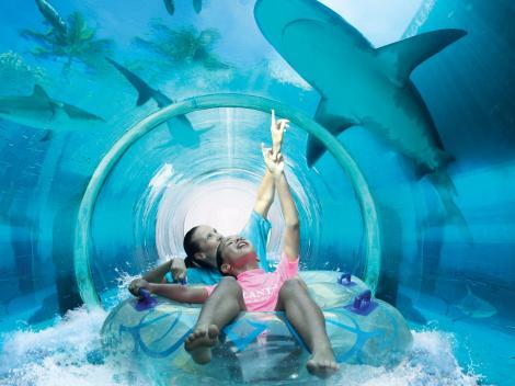 Aquaventure Waterpark At Atlantis The Palm Dubai Water Parks