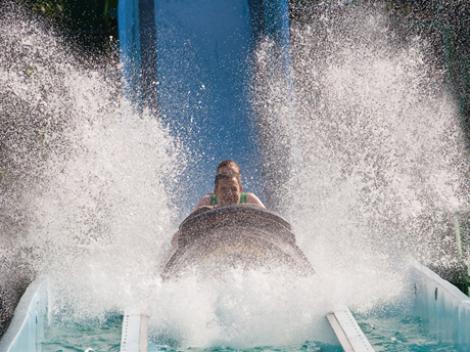 Busch Gardens Tampa Bay Florida Tickets Attraction Tickets Direct