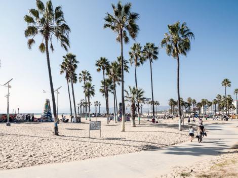 L.A. City, Movie Stars' Homes & Beach Tour