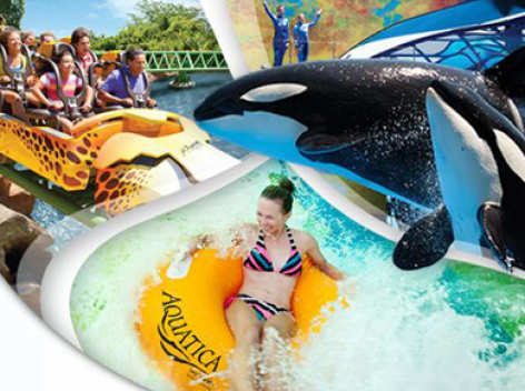 3 Amazing Florida Parks for the Price of 2!