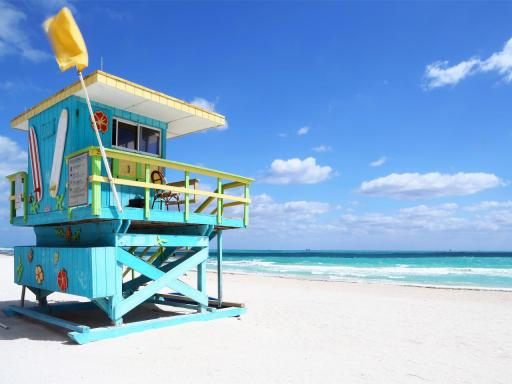 2-day South Beach Getaway with Dolphin Encounter