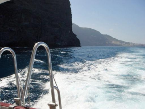 Royal Delfin Cruise Tenerife