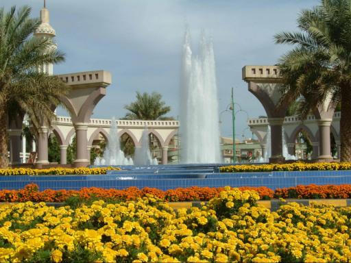 Al Ain Oasis Tour from Dubai