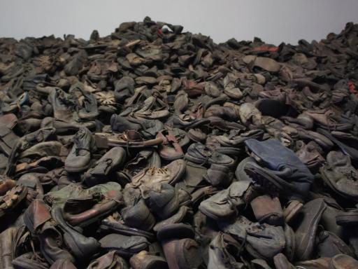 Auschwitz Tour Video