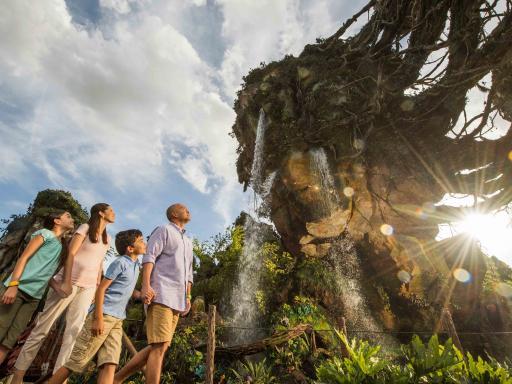 Avatar at Disney's Animal Kingdom Theme Park