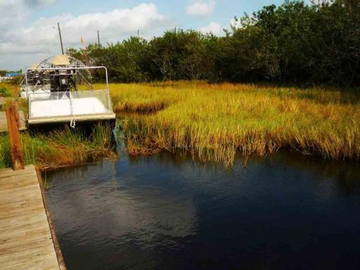 Everglades Airboat Adventure and Miami City Tour