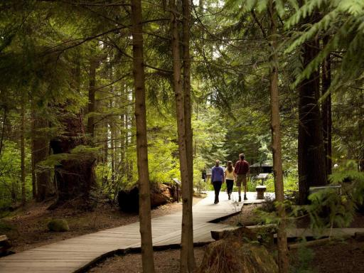 how to get to grouse mountain from capilano bridge