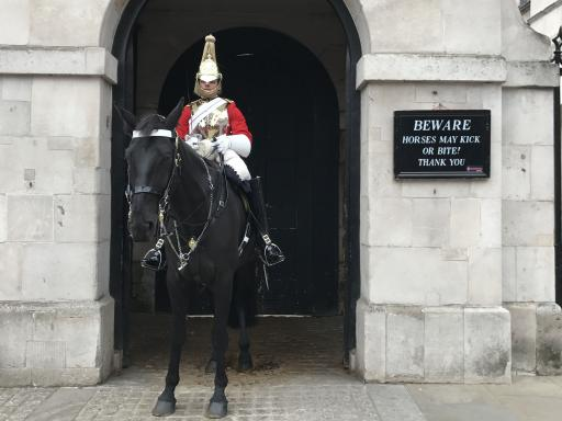 London In a Day: Tower of London, Westminster Abbey & Changing of the Guard