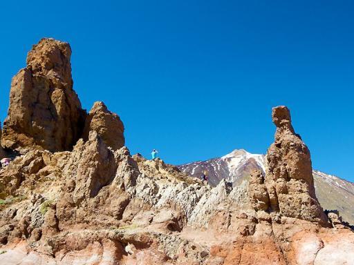 Mount Teide & Loro Parque