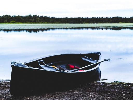 Noosa River Everglades BBQ Canoe Cruise