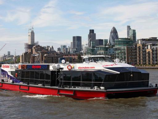 River Thames Hop-on Hop-off Sightseeing Cruise & Cutty Sark Combo Ticket