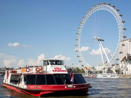 River Thames Hop-on Hop-off Sightseeing Cruise & London Eye Combo Ticket