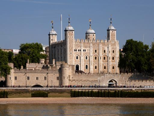 River Thames Hop-on Hop-off Sightseeing Cruise and Tower of London Combo Ticket