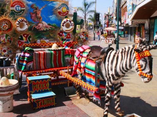 Tijuana Shopping Adventure from Anaheim