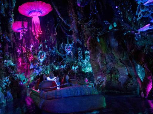 Na'vi River Journey at Walt Disney World
