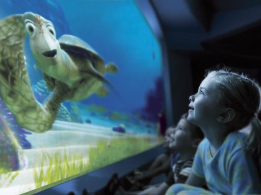Turtle Talk with Crush Walt Disney World