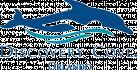 Discovery Cove® logo