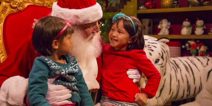 Busch Gardens Christmas Town Tampa.Christmas Town Comes To Busch Gardens Tampa Bay