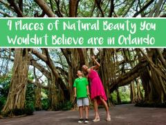 4 Places of Natural Beauty You Wouldn't Believe are in Orlando