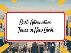 Best of New York's Alternative Tours Bored of traditional walking tours?