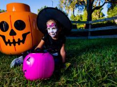 WHAT'S ON: LEGOLAND Florida Seasonal Events