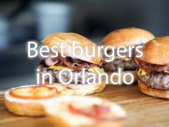 Best Burger at the Orlando Parks It's #burgerday !