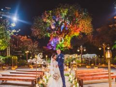 You Can Now Get Married in Front of the Tree of Life at Disney's Animal Kingdom Ever dreamed of getting married at Walt Disney World?
