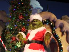Put Some Grinch In Your Christmas