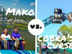 Mako vs Cobra's Curse By ATD's Florida experts Susan & Simon Veness