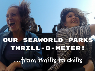 Our SeaWorld Park Thrill-o-Meter! Where do you fall on our thrill-o-meter?