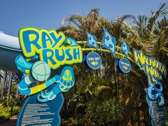 Ray Rush Opening at Aquatica This Weekend!