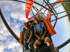 Tigris Opening Date Confirmed for Busch Gardens