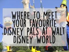 Where to Meet Your Favourite Disney Pals at Walt Disney World