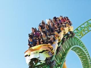 Busch Gardens® Tampa Bay Lose yourself on incredible wildlife-inspired thrill rides