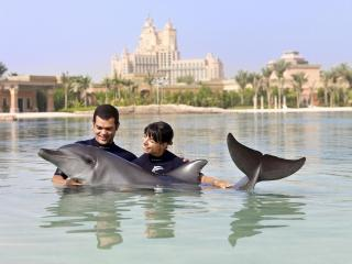 Dolphin Bay at Atlantis The Palm