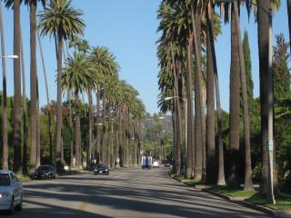 Los Angeles & Hollywood Highlights from Ananheim