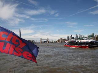 River Thames Hop-on Hop-off Sightseeing Cruise St Pauls Cathedral Combo Ticket