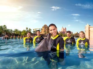 Atlantis Dolphin Encounter at Dolphin Bay