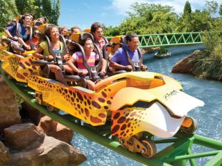 Busch Gardens Tampa Bay Florida Tickets Attraction Tickets Direct