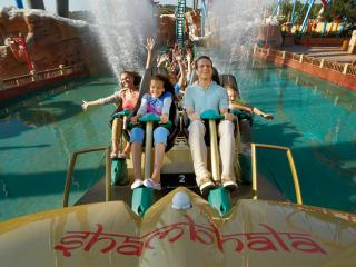 Port Aventura 7 Days/2 Parks Offer Ticket