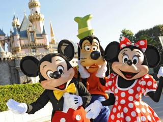 2 Day Disneyland California 1 Park Per Day Ticket