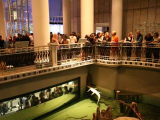 California Academy of Sciences Nightlife VIP Tour