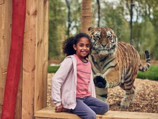 Chessington World of Adventures Resort One Day Ticket