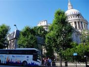 Royal London Tour including St Paul's Cathedral and Buckingham Palace