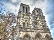 Guided City Tour and Notre-Dame Cathedral Area